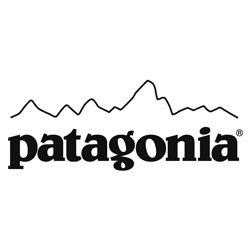 Evaluation of Patagonia's Corporate Identity